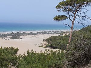 Patara, Lycia - Patara Beach on the Turkish Riviera