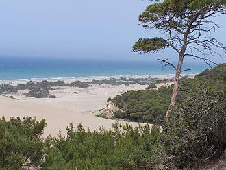 Patara, Lycia - Patara Beach on the Turkish Riviera