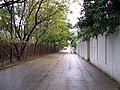 Path near Prince of Wales Hosp HK.jpg