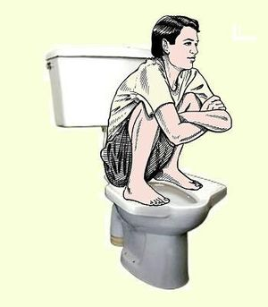 English: Pedestal squat toilet