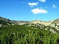 Peisaj glaciar în Parâng - panoramio.jpg