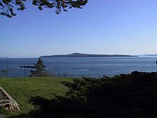 Pender Island4.jpg
