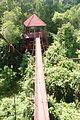 Peninsular Botanical Garden (Thung Khai) DSC 0455.jpg