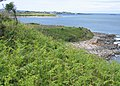 Penrhyn Headland - geograph.org.uk - 283932.jpg