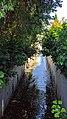 Permanenta Creek looking upstream from W Middlefield Rd.jpg