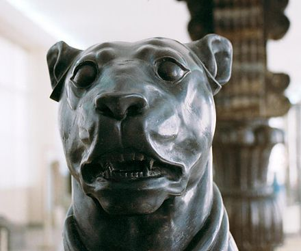 Statue of a Persian Mastiff found at the Apadana, kept at the National Museum, Tehran. Persepolis - statue of a mastiff.jpg