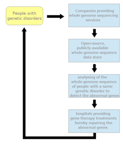 Personal genomics gene therapy flowchart.png