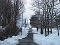 Piedmont Street after snow - panoramio.jpg