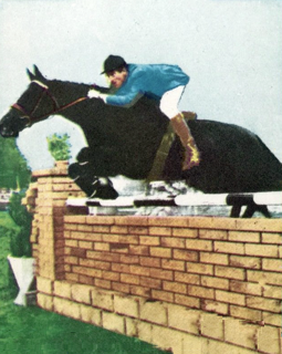 Equestrian at the 1964 Summer Olympics – Individual jumping Equestrian at the Olympics