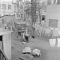 PikiWiki Israel 51556 laundry day.jpg