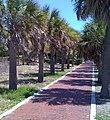 Pinellas County, FL, USA - panoramio (5).jpg
