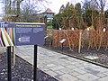 Plants for materials and fibres, Horniman museum gardens SE23.jpg
