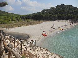Playas de Menorca.jpeg