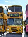 Plymouth Citybus 183 F600GVO (2468186072).jpg