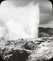 Pohutu Geyser, Rotorua, North Island (4750341326).jpg