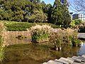 Pond in Higashi Park, Fukuoka 2.JPG