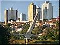 Ponte estaiada - panoramio (2).jpg