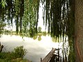 Ponykovytsya, Lviv Oblast, Ukraine, 80640 - panoramio (8).jpg