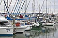 Power Boat Racing Redcliffe Friday-09 (4998710643).jpg