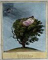 Precariously perched on the top of a tree, William IV is sle Wellcome V0050228.jpg