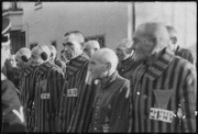Prisoners in the concentration camp at Sachsenhausen, Germany, December 19, 1938. Heinrich Hoffman Collection. - NARA - 540177