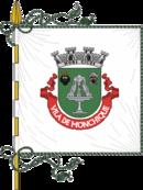 Bandeira de Monchique