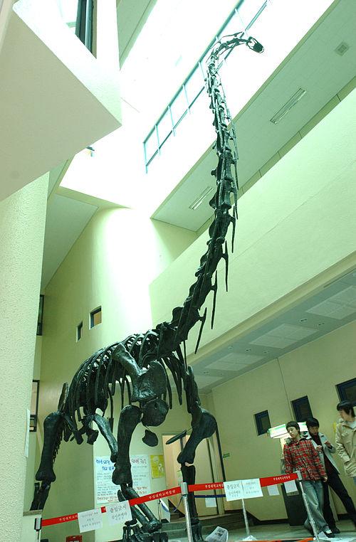 Pukyongosaurus