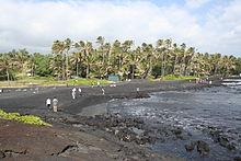 Foto van de kust met 10 personen staan of lopen op het strand en palmbomen op de achtergrond