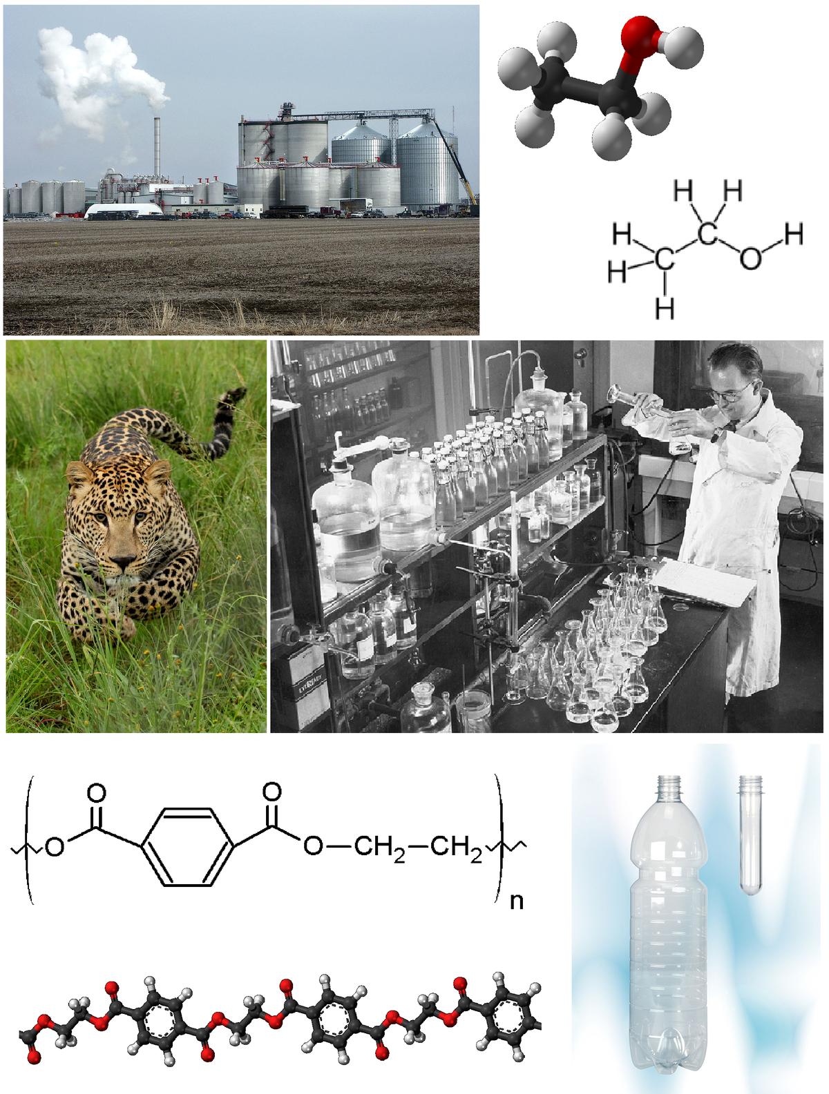 Material de laboratório químico