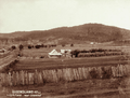 Queensland State Archives 2512 Farm near Lowood c 1898.png