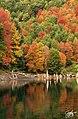 Rainbow Lagoon (159051485).jpeg