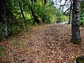 Rattlesnake Creek Site NRHP 78002762 Klickitat County, WA.jpg