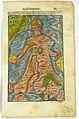 Regina Europa from Sebastian Münster's Cosmographia.jpg