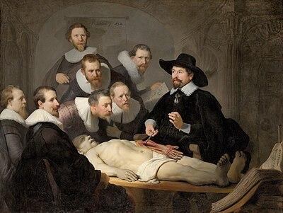 Outline Of Human Anatomy Wikipedia