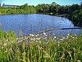 Reservoir Longbridge - panoramio.jpg