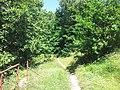 Reta, Mikołów, Poland - panoramio (22).jpg