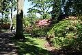 Rhododendronpark Bremen 20090513 052.JPG