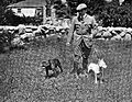 Richard Harding Davis and hid Dogs.jpg