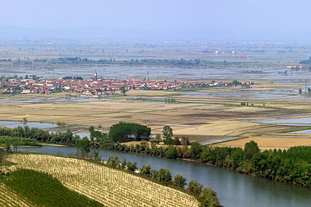 Rice fields in the province of Vercelli, eastern Piedmont. RisaieVercellesi Panorama2.jpg
