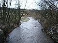 River Darwen - geograph.org.uk - 671033.jpg