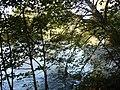 River Derwent - geograph.org.uk - 298046.jpg