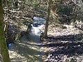 River Glyme - geograph.org.uk - 1801783.jpg