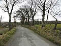 Road at Aughalenty - geograph.org.uk - 1757298.jpg