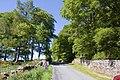 Road to Newton of Corsindae - geograph.org.uk - 1339802.jpg