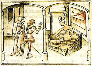Master of Wavrin - An illustration of the Roman de Gèrart de Nevers by the Wavrin Master.