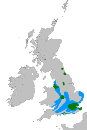 Feral parakeets in Great Britain - Rose-ringed parakeet distribution in South-East England