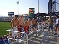 Rosenblatt Stadium - panoramio.jpg