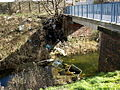 Rubbish Accumulation in Barmston Drain - geograph.org.uk - 706826.jpg