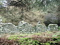 Ruined cottage in the woodlands behind Porth y Nant village - geograph.org.uk - 715695.jpg
