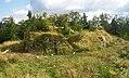 Ruiny zamku i zniszczona tablica informacyjna znajdujące się na wzgórzu..JPG